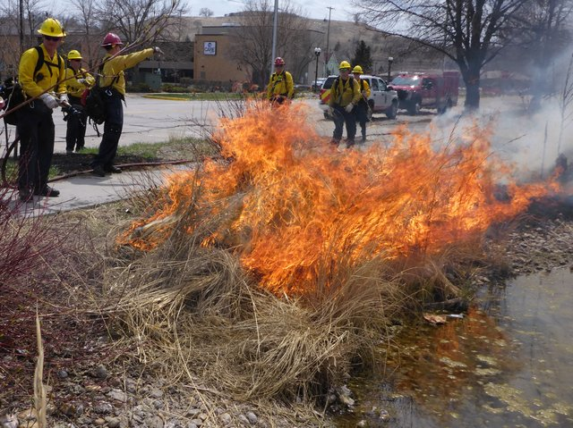 Fire returns to Park after two years